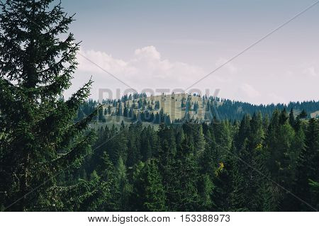 Nature landscape. Forest and mountains at summer. View of Velika Planina or Big Pasture Plateau Slovenia.