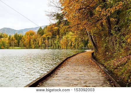 Wooden Pier on the Alpine Lake Bled. Autumn in Slovenia Europe. View on Island with Catholic Church in Bled Lake with Castle and Mountains in Background.