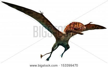 Dimorphodon from the Jurassic era 3D illustration