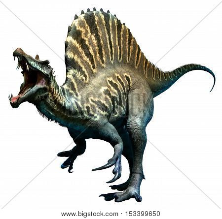 Spinosaurus from the Cretaceous era 3D illustration