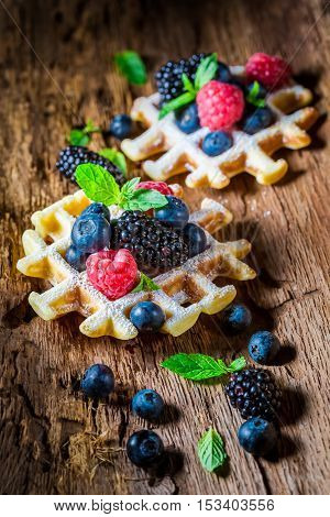 Homemade Berry Fruits With Waffels On Wooden Bark
