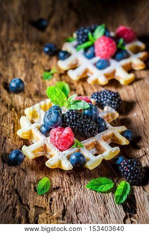 Homemade Waffels With Berry Fruits On Wooden Bark