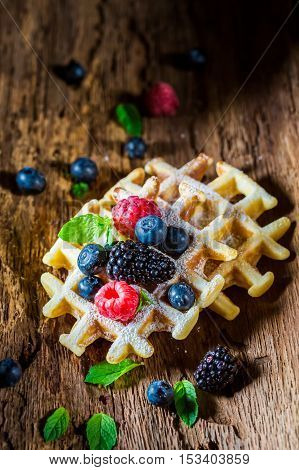 Fresh Waffels With Berry Fruits On Wooden Bark