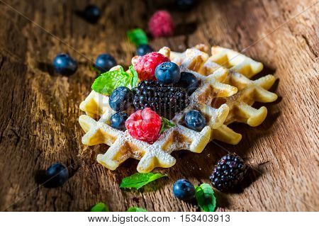 Waffels with berry fruits in waffels on old bark