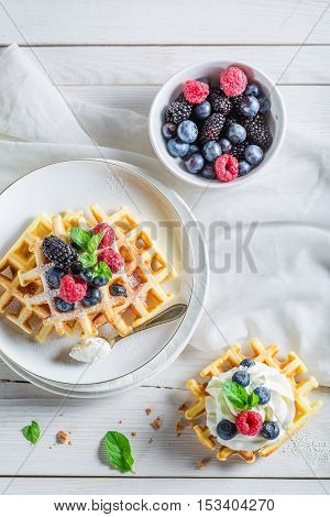 Tasty Berries With Waffels And Whipped Cream