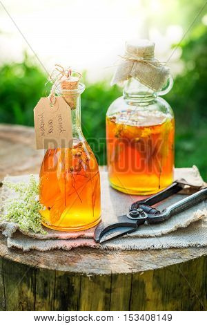 Homemade Tincture With Honey, Linden And Alcohol In Garden