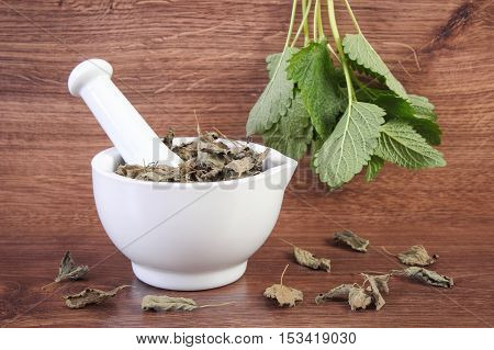 Fresh Green And Dried Lemon Balm In Mortar, Herbalism, Alternative Medicine