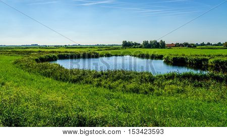 A pond in flat land of a farmers field near the Veluwemeer at the town of Nijkerk in the Netherlands