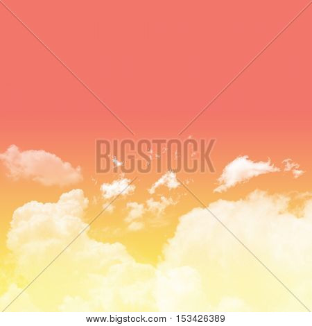 Peach echo and buttercup tone sky with cloudy