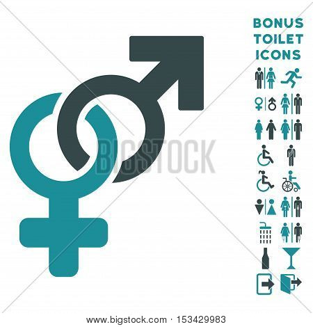 Heterosexual Symbol icon and bonus male and lady toilet symbols. Vector illustration style is flat iconic bicolor symbols, soft blue colors, white background.