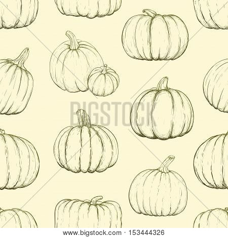 Seamless pattern with pumpkins for thanksgiving day halloween etc. Vector sketchy illustration