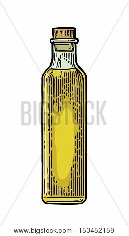 Bottle glass of liquid with cork stopper. Olive oil. Hand drawn design element. Vintage color vector engraving illustration for logotype poster web. Isolated on white background.