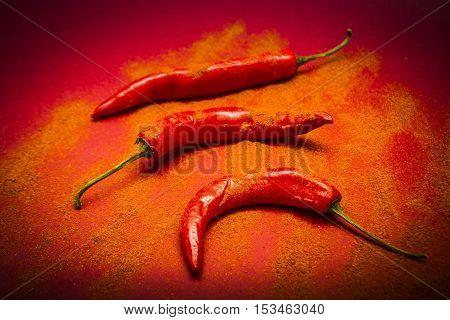Curry Shop Art