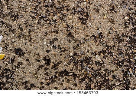 Asphalt, asphalt texture, wet asphalt, scabrous asphalt background, asphalt pattern, grunge background, abstract