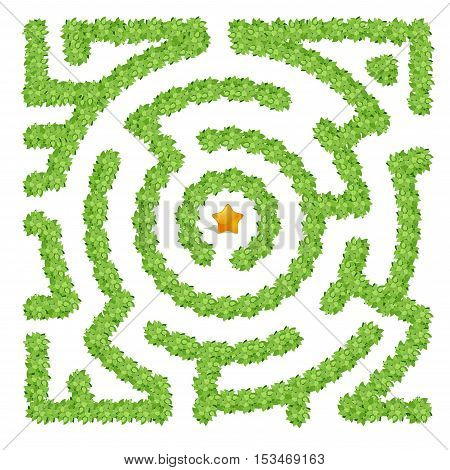 A labyrinth consisting of green bushes on a white background top view. Maze made from leaves