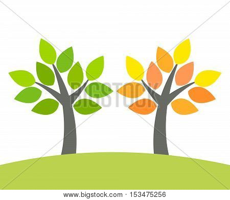 Spring green and autumn orange tree illustration