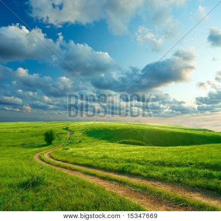 Sommerlandschaft mit grünem Gras, Straßen- und Wolken