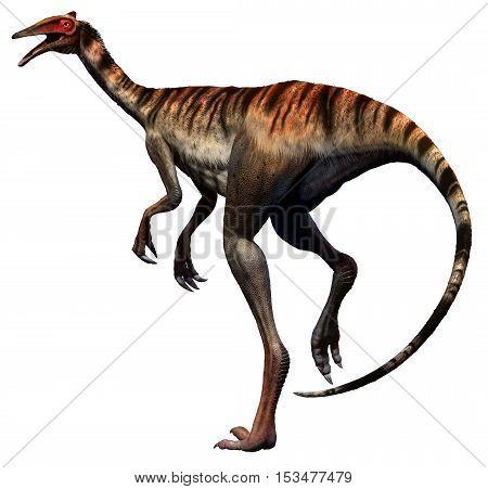 Pelecanimimus from the Cretaceous era 3D illustration