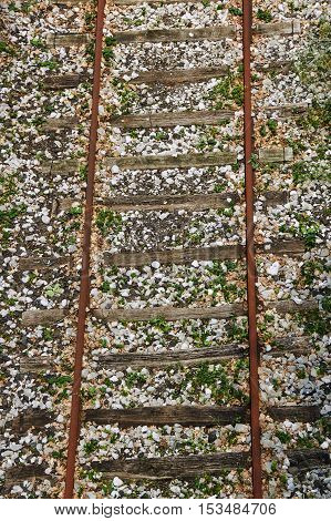 Unused railway tracks on wooden sleepers in France