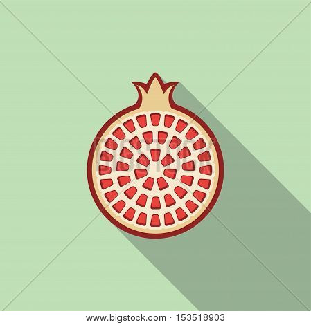 vector flat icon of pomegranate fruit cut