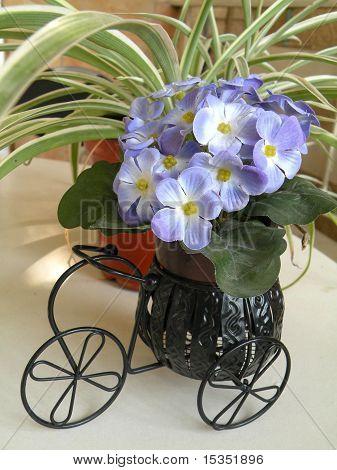 Decorative Flowers In Decorative Trays