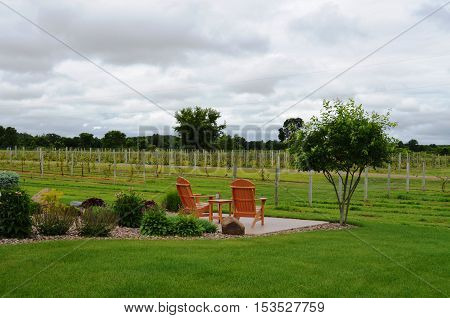 Two Adirondack Chairs on a patio in the gardens and overlooking a vineyard