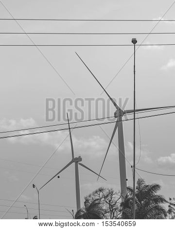 Black and white photo showing eolic energy windmills at highway in Paraiba district Brazil