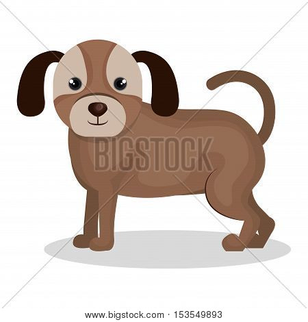 dog pet mascot isolated icon vector illustration design