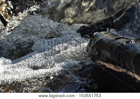 Torrent. Fast flowing brook. Clean pure water from a waterfall
