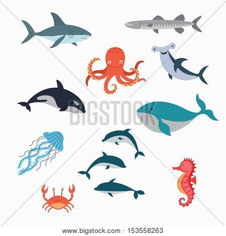 Marine Life Vector Design Illustration. set fish