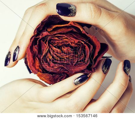 close up picture of manicure nails with dry flower red rose, dehydrated by winter concept