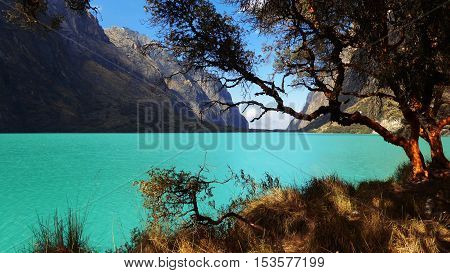 laguna con aguas turquesas de los glaciares