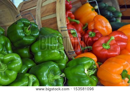 variety of colorful peppers tumbling out of bushel basket