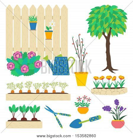 Vector set of garden elements. Flowers in pots flowerbed tree vegetable patch beetroot carrot garden tools trowel hedge shears peony bush watering can seedling