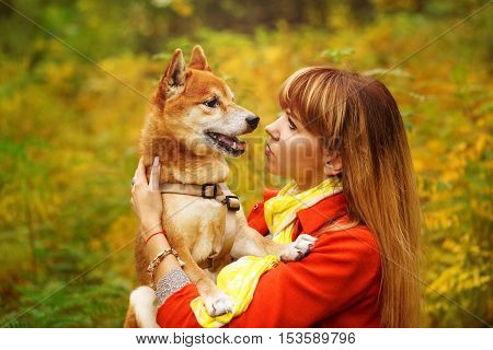 Girl and dog Shiba Inu look at each other in autumn park. Pedigree dog. Funny animals and their owners. Riot of colors of nature. Outdoor Activities.