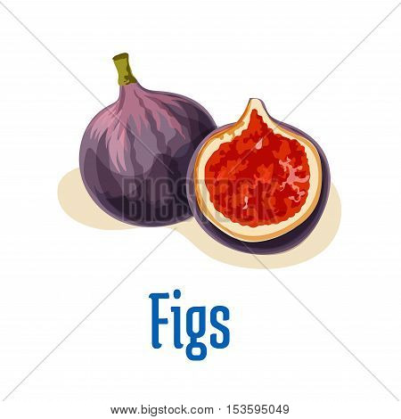 Fresh figs whole and half cut emblem. Vector color isolated elements of tasty exotic fig fruit. Design element for juice, jam sticker label, snack package design