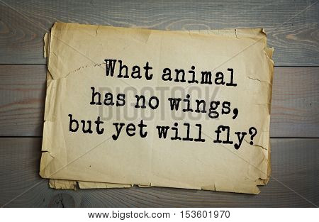 Traditional riddle. What animal has no wings, but yet will fly?( A caterpillar has no wings, but will fly when it matures and becomes a butterfly.)