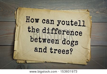 Traditional riddle.  How can you tell the difference between dogs and trees?( By their bark.)