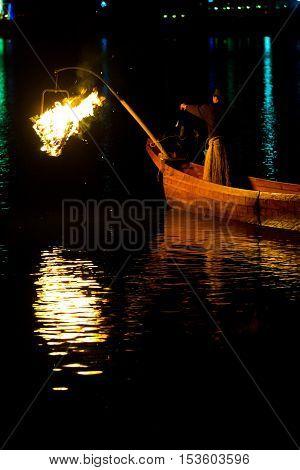 Ukai Cormorant Night Fishing Bird Firelight Gifu