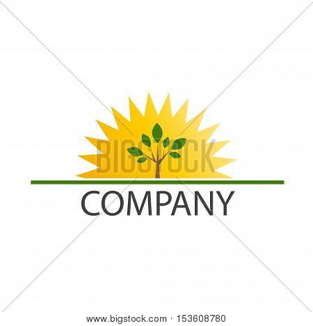 Vector sign sun and tree, isolated illustration