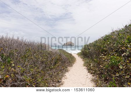 Narrow sandy path to the beach in Guadeloupe