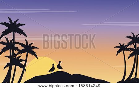 Silhouette of seabird and palm scenery at sunrise