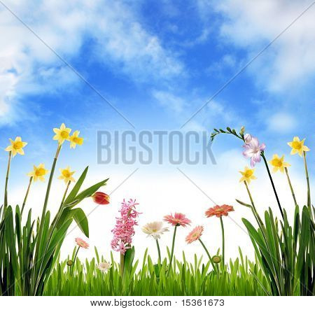 Spring scenery, photoillustration
