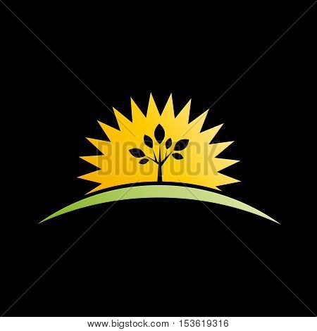 Vector sign sun and tree on black background