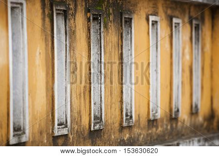 Detail of  wall with mould and mildew growing in Hoi An, Vietnam