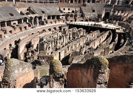Colosseum Amphitheater. Rome, Italy