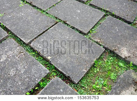 Gray concrete sidewalk pavement with sprouting green grass through the paving. Urban background texture. Close up.