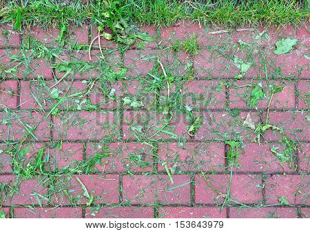 Red concrete paving cover with pieces of freshly cutting wet green grass. Urban background texture.