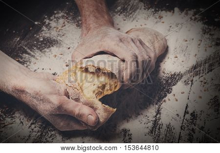 Breaking fresh bread. Baking and cooking concept background. Hands tearing apart loaf on rustic wooden table sprinkled with flour. Stained dirty hands of baker. Soft toning