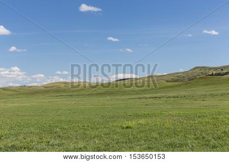 Hilly grassland in South Dakota's Black Hills.